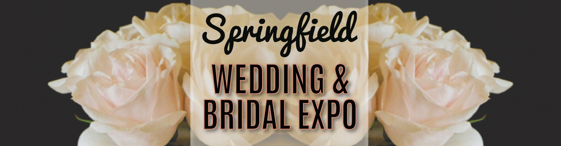 Springfield Wedding Bridal Expo 2019 Wedding Show Western Ma